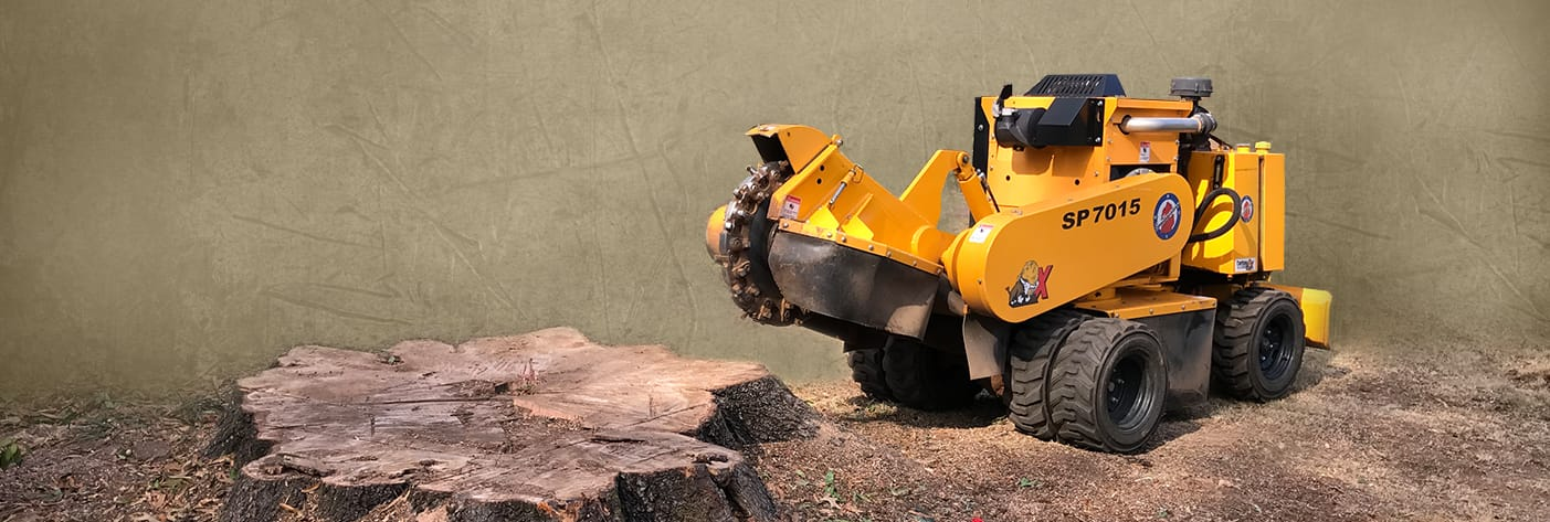 Stump Grinding & Removal Service