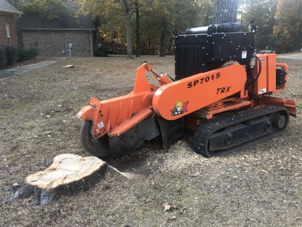 Removing a small tree stump with a grinder in Wetumpka, Alabama.