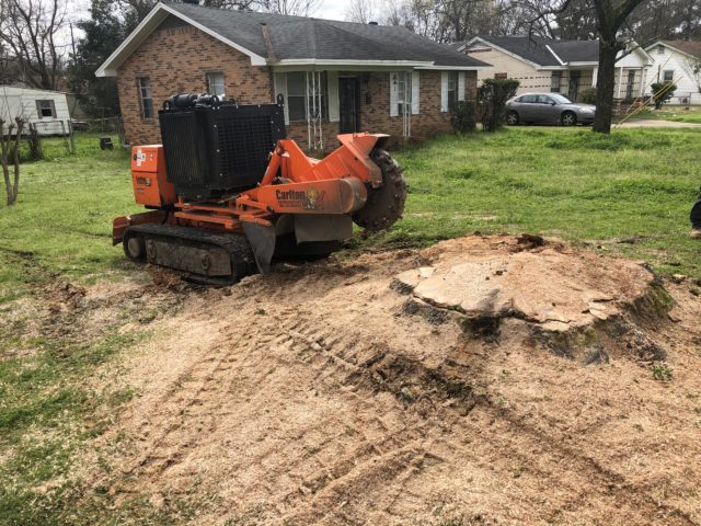Using a stump grinder to remove a tree stump
