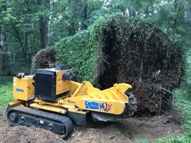 Large blow over stump removed with forestry equipment in Wetumpka, Alabama