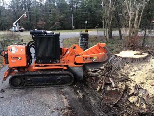 Grinding a tree stump and the surrounding roots near a driveway in Wetumpka, AL.